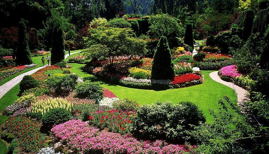 5 Key Landscape Design Principles For Beginners